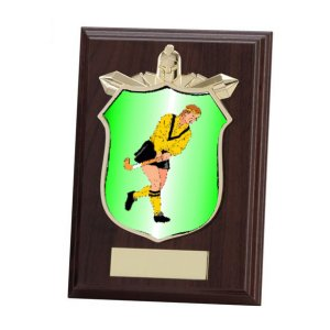 PL15144 Titans Wooden Plaque